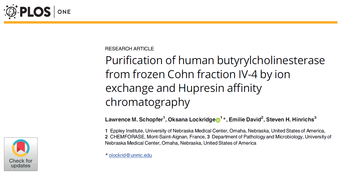 Large-scale purification of human BChE from frozen Cohn fraction IV-4 using Hupresin®